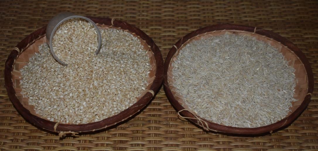 mon riz cargo1